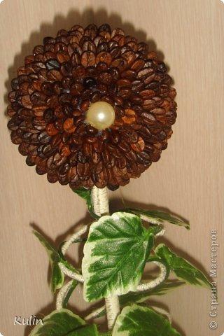 Кофейное сердце с розами-сердечный подарок... фото 9