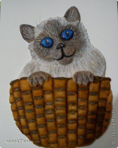 Кот в корзине фото 2