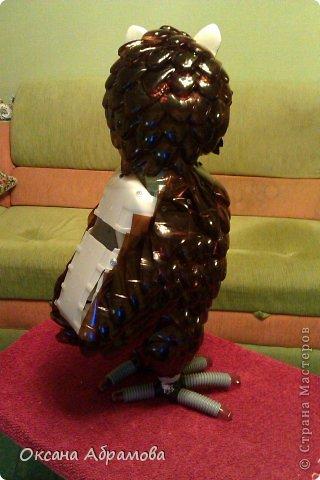 """Хочу познакомить Вас со своим изделием """"Филин"""", изготовлен из пластиковых бутылок. фото 27"""