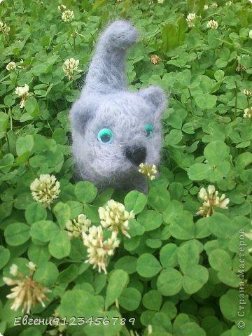 Сделана из сто процентной шерсти мериноса.Серенькая Муся любит гулять в высокой травке и кушать клевер.Ей нравится его сладкий запах и нешный,словно облачко бутон.