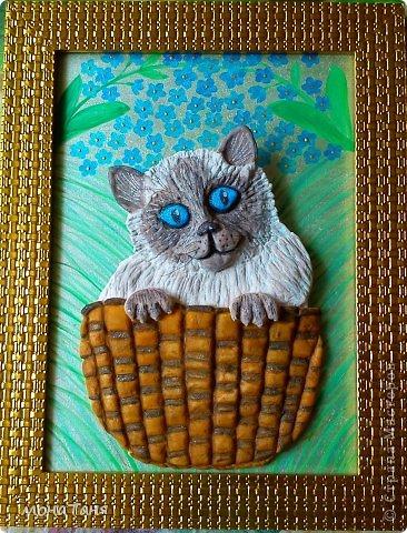 Кот в корзине фото 1