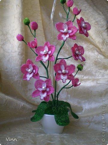 Поделка изделие Бисероплетение Орхидея из бисера Бисер фото 1.