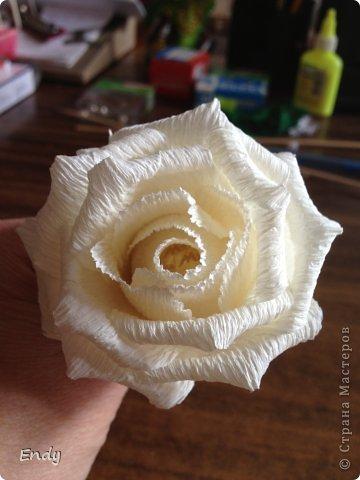 Здравствуйте дорогие мои мастерицы. По вашим просьбам выкладываю свой МК по розам. Для работы потребуется: 1. Гофрированная флористическая бумага. 2. Конфеты (лучше круглой формы). 3. Бамбуковая шпажка или зубочистка (это зависит от высоты стебля в композиции). 4. Тейп лента (или гофрированная бумага темно-зеленого или темно-оливкового цвета). 5. Нитки для крепления лепестков к шпажке. 6. Ножницы. 7. Клей (при условии, если я оборачиваю стебель гофрированной бумагой). фото 8