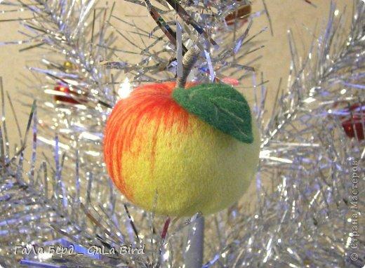Яблоки фото 2