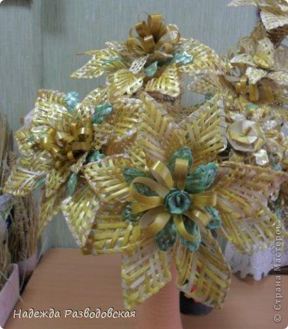moya_solomka006 Поделки из соломы: плетение из соломки для начинающих, изделия своими руками