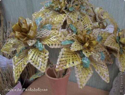 moya_solomka007 Поделки из соломы: плетение из соломки для начинающих, изделия своими руками