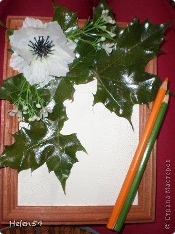 Картина панно рисунок Мастер-класс День учителя Начало учебного года Аппликация Делаем панно ко Дню Учителя Гуашь Карандаш Клей Листья фото 17
