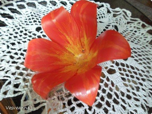 Здравствуйте жители и гости Страны Мастеров! Эта лилия появилась у меня ко дню рождения одной девушки. Вот она- лилия для Лилии! Может быть и кому-нибудь из вас пригодится. фото 6