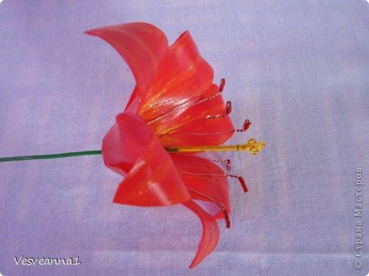 Здравствуйте жители и гости Страны Мастеров! Эта лилия появилась у меня ко дню рождения одной девушки. Вот она- лилия для Лилии! Может быть и кому-нибудь из вас пригодится. фото 10