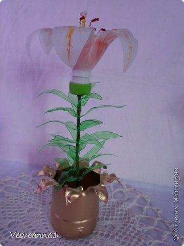Здравствуйте жители и гости Страны Мастеров! Эта лилия появилась у меня ко дню рождения одной девушки. Вот она- лилия для Лилии! Может быть и кому-нибудь из вас пригодится. фото 17