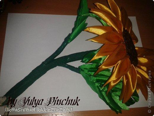 Я покажу вам как сделать вот такой солнечный цветок:)):))Нам понадобится: лента атласная жёлтая-3 м, лента зелёная около метра, зёрна кофе, гуашь зелёная, гуашь коричневая, проволока, салфетки(туалетная бумага), клей(у меня Мастер клей), клей ПВА, картон, гипс, чай, нитки. фото 44