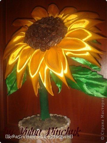 Я покажу вам как сделать вот такой солнечный цветок:)):))Нам понадобится: лента атласная жёлтая-3 м, лента зелёная около метра, зёрна кофе, гуашь зелёная, гуашь коричневая, проволока, салфетки(туалетная бумага), клей(у меня Мастер клей), клей ПВА, картон, гипс, чай, нитки. фото 47