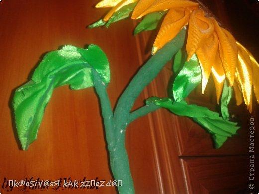 Я покажу вам как сделать вот такой солнечный цветок:)):))Нам понадобится: лента атласная жёлтая-3 м, лента зелёная около метра, зёрна кофе, гуашь зелёная, гуашь коричневая, проволока, салфетки(туалетная бумага), клей(у меня Мастер клей), клей ПВА, картон, гипс, чай, нитки. фото 46