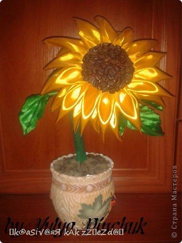 Я покажу вам как сделать вот такой солнечный цветок:)):))Нам понадобится: лента атласная жёлтая-3 м, лента зелёная около метра, зёрна кофе, гуашь зелёная, гуашь коричневая, проволока, салфетки(туалетная бумага), клей(у меня Мастер клей), клей ПВА, картон, гипс, чай, нитки. фото 1