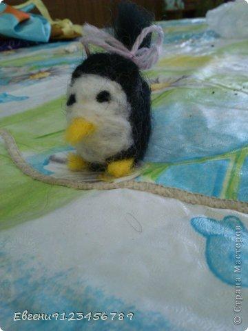 Сидела я в интернете и увидела обычное фото пингвина. фото 3