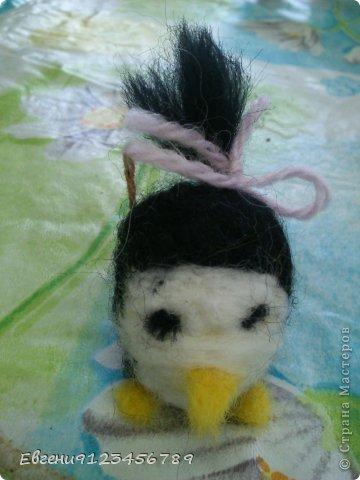 Сидела я в интернете и увидела обычное фото пингвина. фото 4