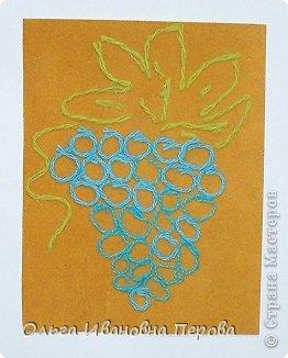 Кисть винограда фото 2