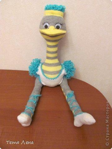 Игрушка Мастер-класс Вязание крючком Шитьё Страус из носков + МК Носки Пряжа фото 1