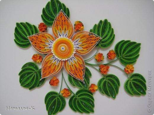 Все цветы и листочки накручены из цветных полосок бумаги шириной 2,5 мм. Листочки уже два года у меня лежат.... сделаны по МК Ларисы Засадной   https://stranamasterov.ru/node/180315 Цветы  нашла в интернете   http://quillingmesoftlee.blogspot.de/ фото 12