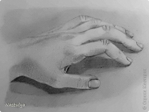 рисунки карандашом с натуры: