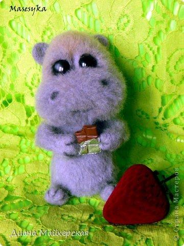 Бегемотик который очень любит сладости)))