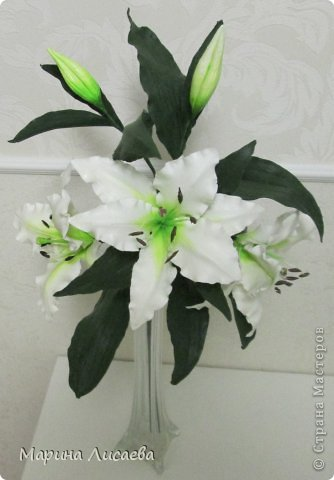 Здравствуйте, уважаемые жители СМ! Хочу получше показать вам свою ветку белой лилии. Я ее уже размещала, но один снимок в куче с другими. Теперь показываю ее поподробней, так как очень она мне нравится. А вам? фото 1
