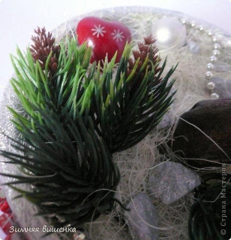Бонсай топиарий Новый год Рождество Моделирование конструирование Новогоднее - елочка и бонсай Гипс Клей фото 4