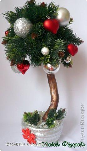 Бонсай топиарий Новый год Рождество Моделирование конструирование Новогоднее - елочка и бонсай Гипс Клей фото 3