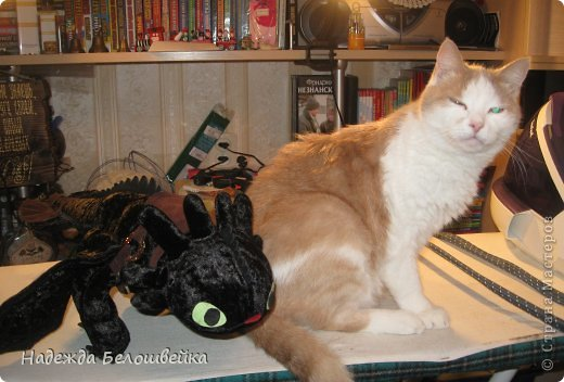 Попросили меня сшить дракона Беззубика для девочки семи лет, дело для меня новое ( игрушки я не шила), пересмотрела в интернете всё, что смогла найти и приступила к делу. фото 17