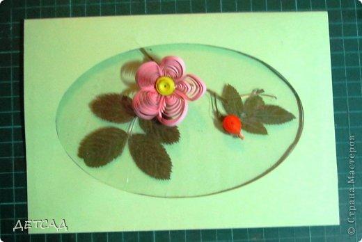 Вот такая открытка с окошком получилась с использованием природного материала и добавления квиллинговых деталей.