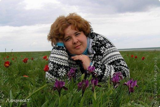 В своём листочке я попыталась  отобразить природу  края, в котором   живу: степь,тюльпаны весной  и  соленое   озеро Маныч Гудило.. Обновила немного. фото 8