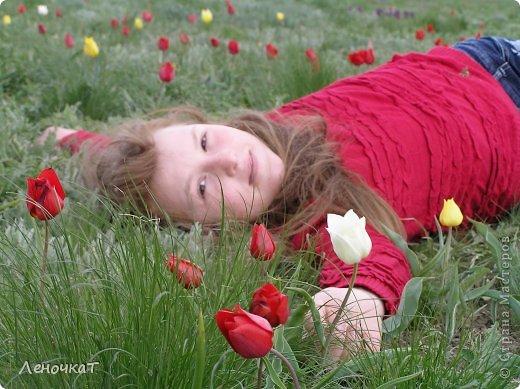 В своём листочке я попыталась  отобразить природу  края, в котором   живу: степь,тюльпаны весной  и  соленое   озеро Маныч Гудило.. Обновила немного. фото 7
