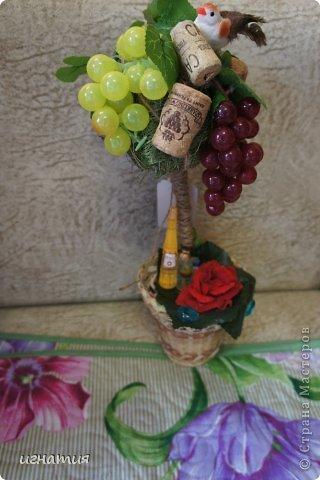 решила покзать свои деревца,их уже нет ,остались фотки:))))))))))))как и водится виноградное фото 2