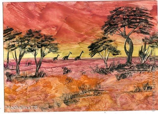 Африканские сюжеты. фото 2
