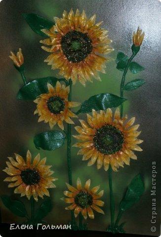 Панно 60 см х 80 см. Выполнено из затвердевающей на воздухе пластики. Цветы объемные, серединки усилены бисером, имитирующем семечки.