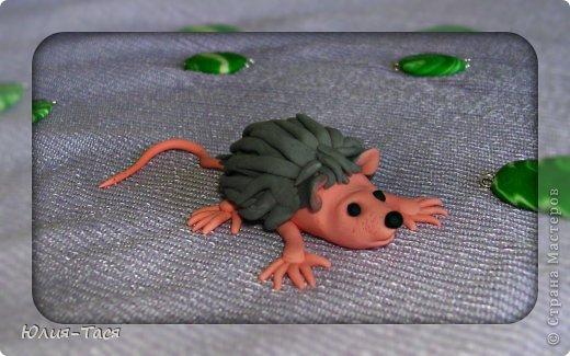 Мой крысо-ежик)) фото 1