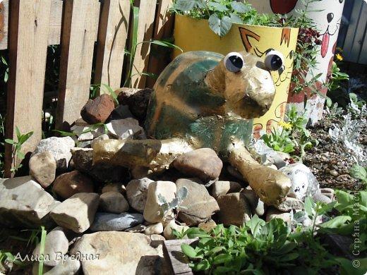 Всем привет)))) Вот еще несколько моих огородных украшалок))))  фото 13