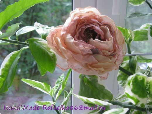 Эту розу-заколку делала еще весной. Это моя самая первая)))   фото 2