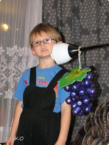 Гроздь винограда фото 1