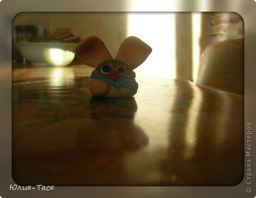 Мой крысо-ежик)) фото 13