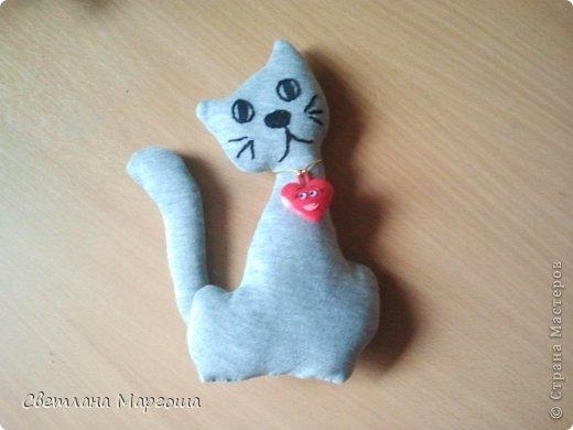 Коты фото 7