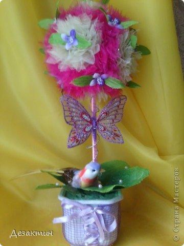 птичий рай фото 1