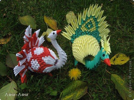 Вышли птички погулять, жёлтых листьев поклевать.))) А кроме листьев нашли даже запоздалый одуванчик. фото 1