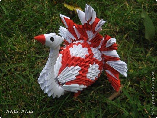 Вышли птички погулять, жёлтых листьев поклевать.))) А кроме листьев нашли даже запоздалый одуванчик. фото 3