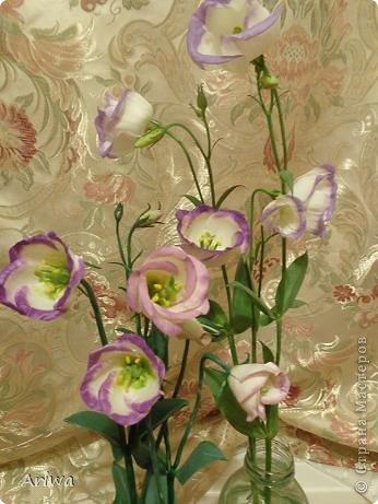 Давно мечтала слепить лизиантус. Лето ушло, последние цветочки в саду замерзли, переходим на цветочные магазины... Купила живой цветок, и за дело... фото 5