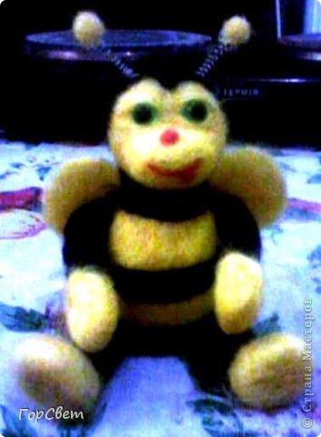 Пчёлка Мая фото 2