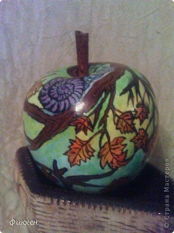 Осеннее яблоко и сиреневые улитки. фото 6