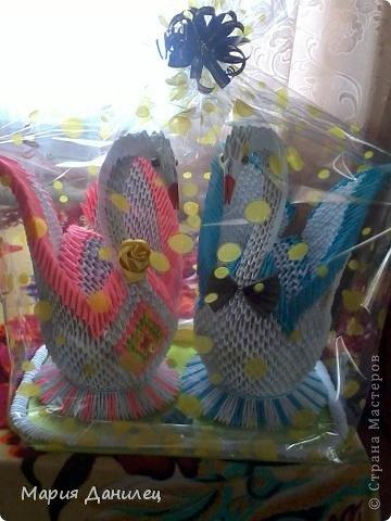Парочка лебедей!!! фото 1