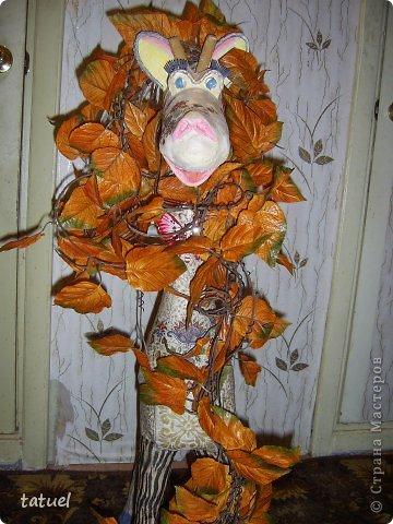 Девочки, посмотрите, какой чудесный кавалер  забрел ко мне на огонек! Притащил ворох осенних листьев, улыбается, комплиментами осыпает. Мечта, а не мужчина! фото 1