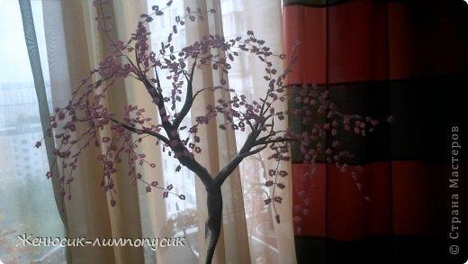 Вдохновившиеся  в Стране Мастеров я решила что тоже сделаю воздушную Сакуру. Вот что из этого вышло фото 3